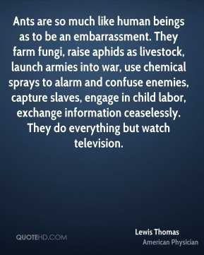Ants are so much like human beings as to be an embarrassment. They farm fungi, raise aphids as livestock, launch armies into war, use chemical sprays to alarm and confuse enemies, capture slaves, engage in child labor, exchange information ceaselessly. They do everything but watch television.