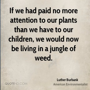 If we had paid no more attention to our plants than we have to our children, we would now be living in a jungle of weed.