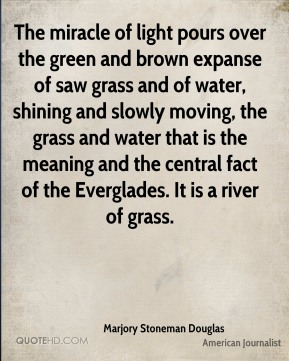 Marjory Stoneman Douglas - The miracle of light pours over the green and brown expanse of saw grass and of water, shining and slowly moving, the grass and water that is the meaning and the central fact of the Everglades. It is a river of grass.