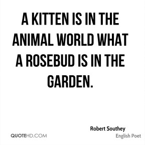 A kitten is in the animal world what a rosebud is in the garden.