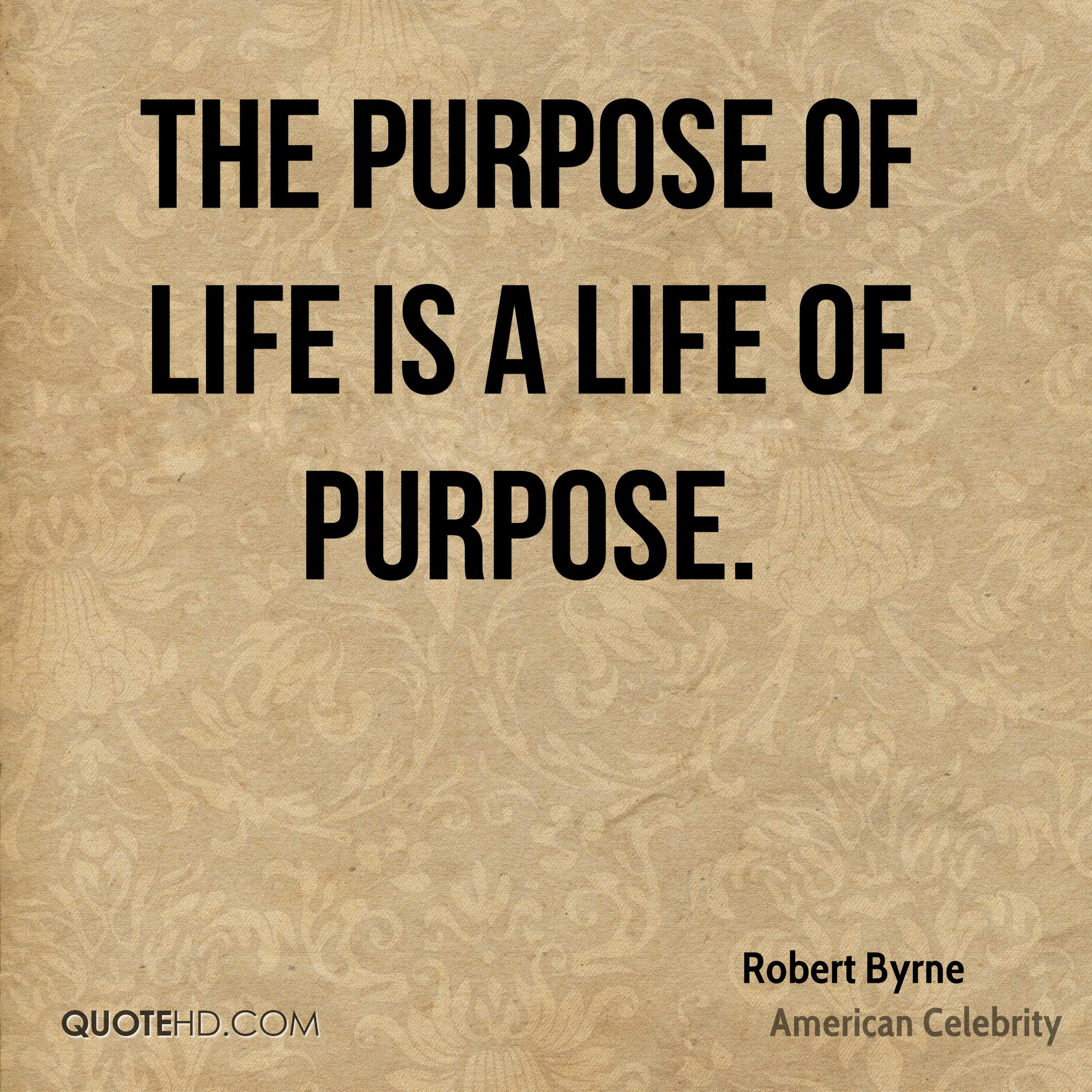 Quotes Purpose Of Life Robert Byrne Life Quotes  Quotehd