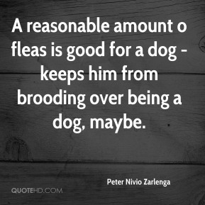 Peter Nivio Zarlenga  - A reasonable amount o fleas is good for a dog - keeps him from brooding over being a dog, maybe.
