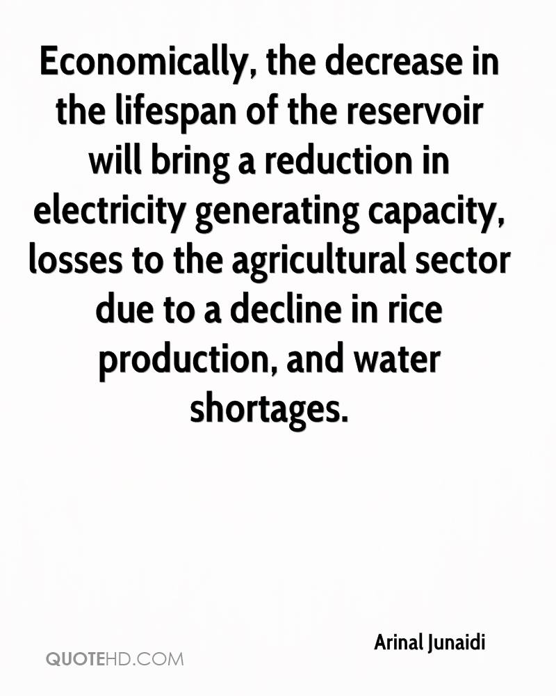 Economically, the decrease in the lifespan of the reservoir will bring a reduction in electricity generating capacity, losses to the agricultural sector due to a decline in rice production, and water shortages.