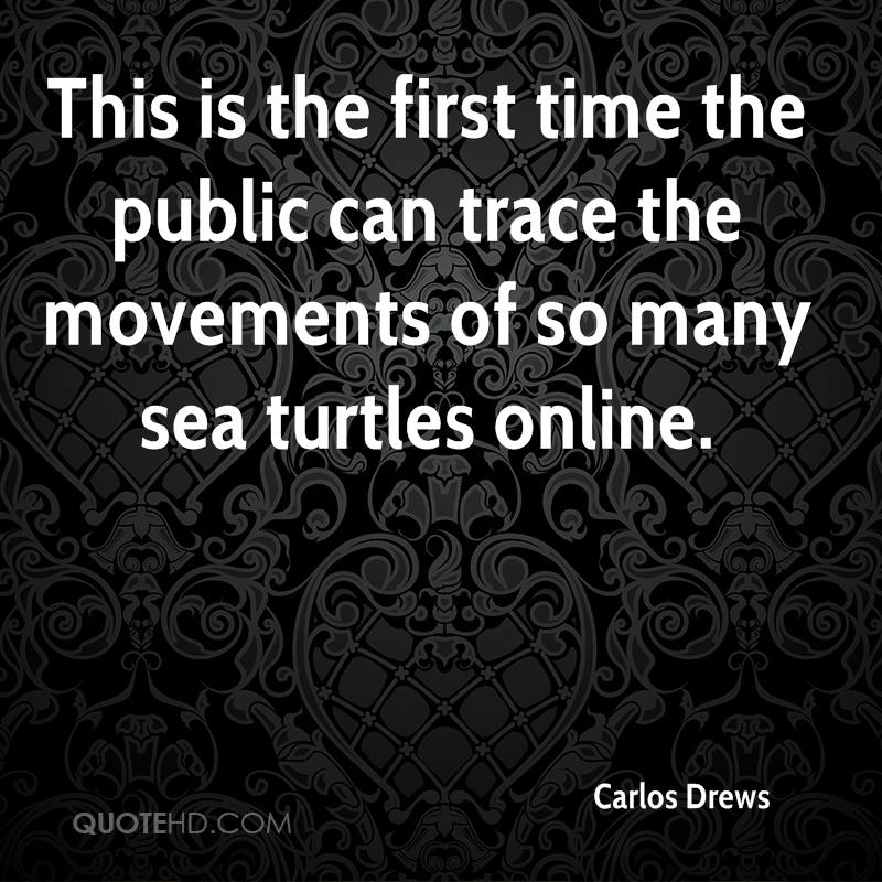 This is the first time the public can trace the movements of so many sea turtles online.