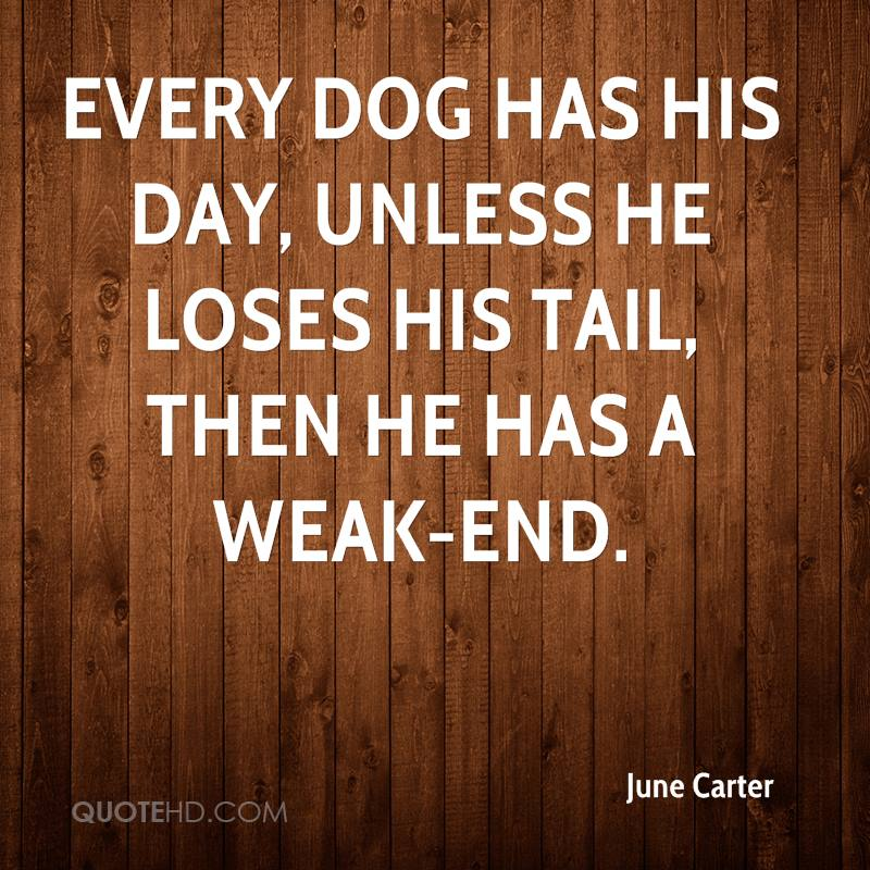Every dog has his day, unless he loses his tail, then he has a weak-end.