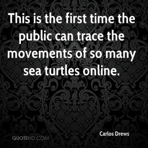 Carlos Drews - This is the first time the public can trace the movements of so many sea turtles online.