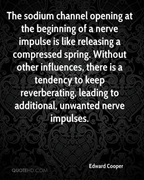 Edward Cooper - The sodium channel opening at the beginning of a nerve impulse is like releasing a compressed spring. Without other influences, there is a tendency to keep reverberating, leading to additional, unwanted nerve impulses.