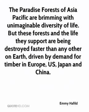 Emmy Hafild - The Paradise Forests of Asia Pacific are brimming with unimaginable diversity of life. But these forests and the life they support are being destroyed faster than any other on Earth, driven by demand for timber in Europe, US, Japan and China.