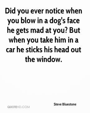 Steve Bluestone  - Did you ever notice when you blow in a dog's face he gets mad at you? But when you take him in a car he sticks his head out the window.