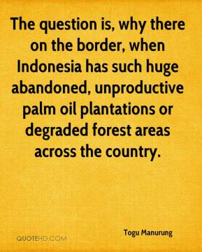 Togu Manurung  - The question is, why there on the border, when Indonesia has such huge abandoned, unproductive palm oil plantations or degraded forest areas across the country.